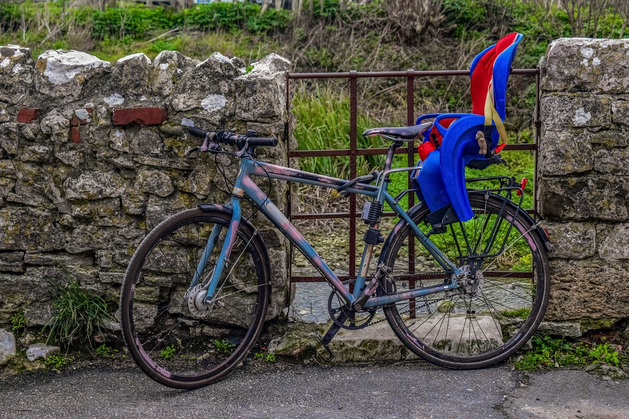 Fotelik dla dziecka – THULE RideAlong. Fotelik rowerowy ciemnoszary