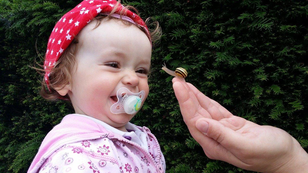 Smoczek motylek dla niemowlaka. Jaki smoczek wybrać i czym się kierować podczas jego zakupu?